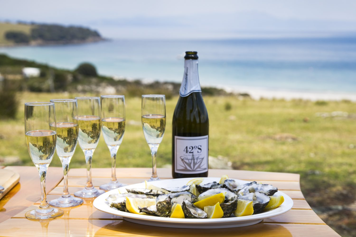 Oysters and sparkling on The Maria Island Walk